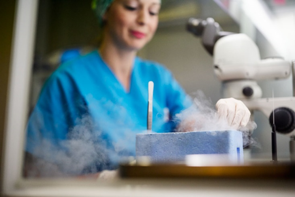 Program krioprezervacije jajnih ćelija na klinici Embryolab